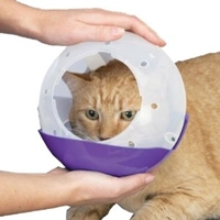 Picture for category Cat Muzzle