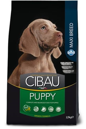 Picture of Cibau - Puppy Maxi