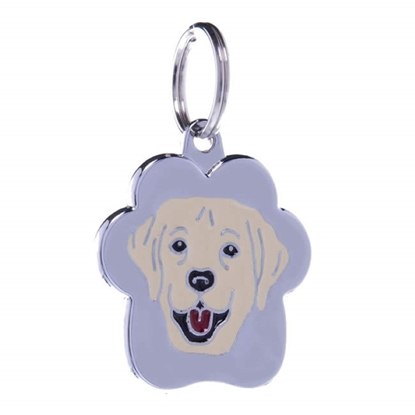 Picture of TAG RAINBOW LABRADOR BEIGE