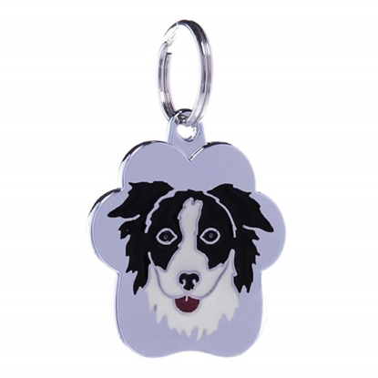 Picture of TAG RAINBOW BORDER COLLIE B&W