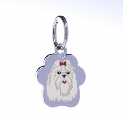 Picture of TAG RAINBOW MALTESE