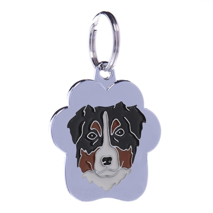 Picture of TAG  RAINBOW AUSTRALIAN SHEPHED
