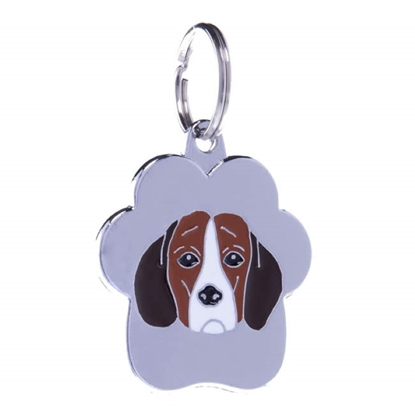 Picture of TAG RAINBOW BEAGLE