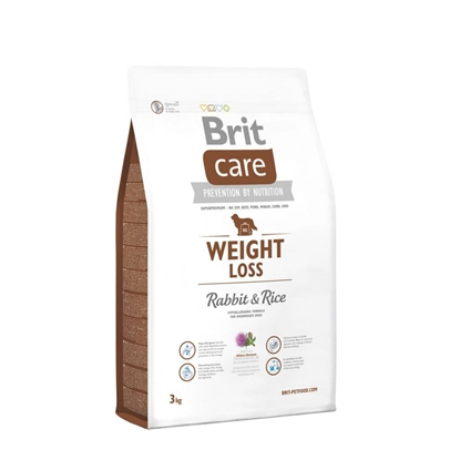 Picture of BRIT DOG WEIGHT LOSS