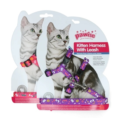 Picture of Pawise Kitten Harness Leash-Pink/Purple