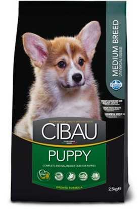 Picture of Cibau - Puppy Medium BREED
