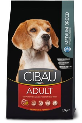 Picture of Cibau - Adult Medium