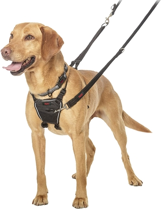 Picture of The Company of Animals HALTI No-Pull Harness