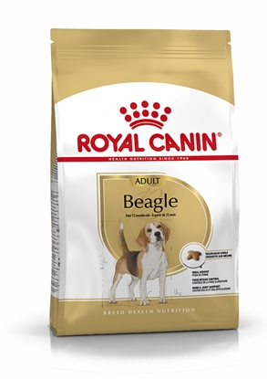 Picture of ROYAL CANIN BEAGLE